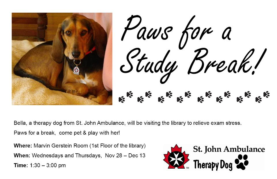 Paws for a Study Break