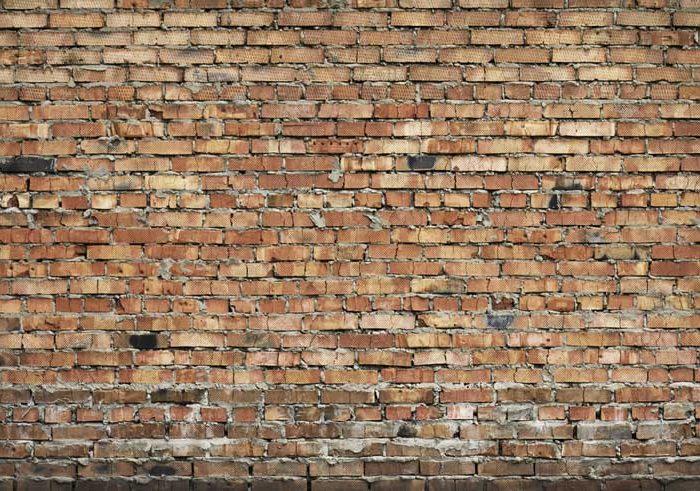 Brick Wall Web
