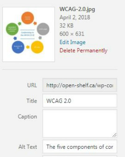 Screen shot of Alt text field in WordPress