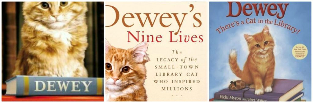 Book covers from three books about Dewey the cat.