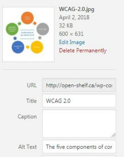Screen shot of Alt text field in WordPress