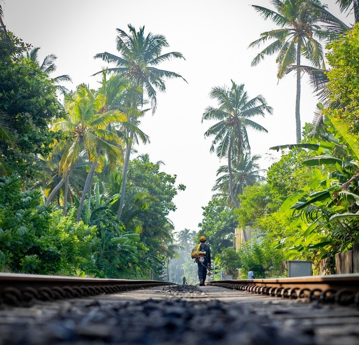 Hikkaduwa, Sri Lanka. Person Walking On A Train Track