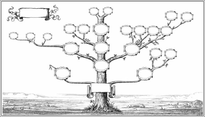 Pen and ink drawing of a family tree with labels for each ancester