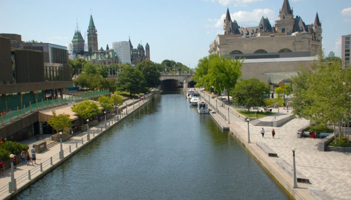 Leslie Weir: LAC Moving Forward