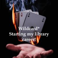 Wildcard*